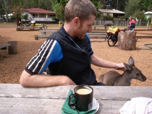 Morning coffee with the Roo's at Donnelly Mill